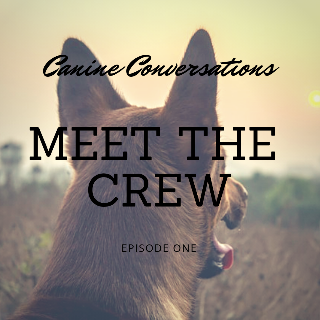 canine conversations dog training podcast episode 1