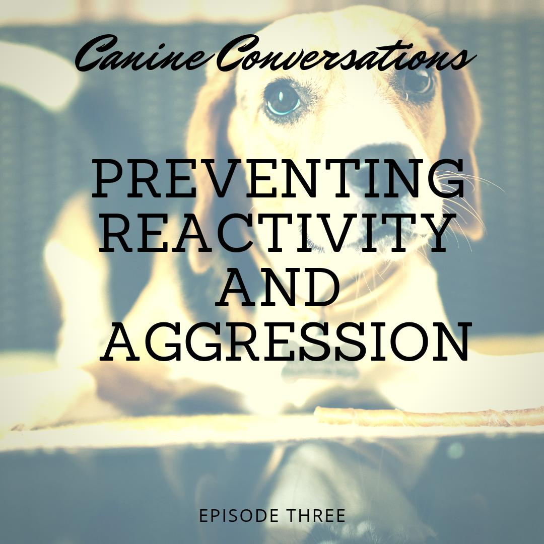 canine conversations dog training podcast