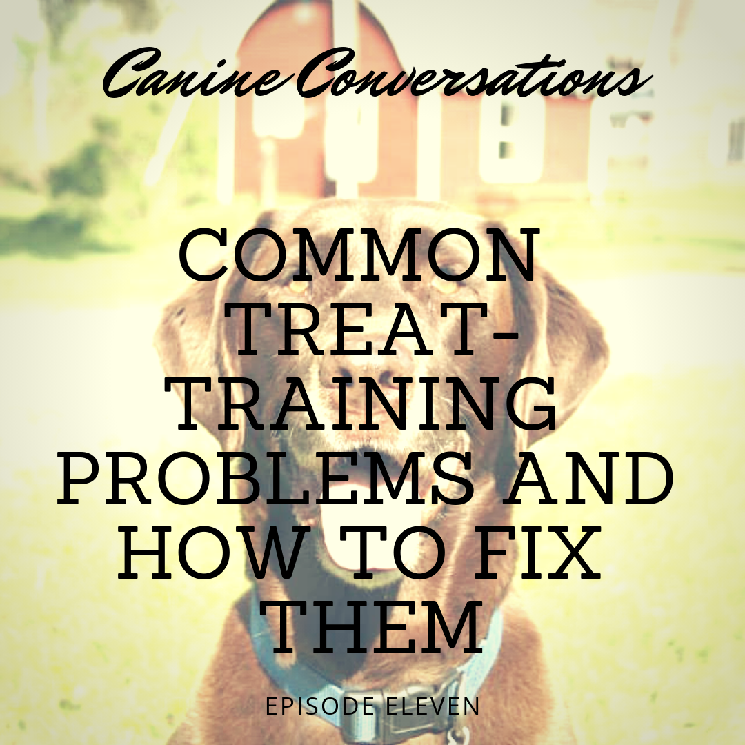canine conversations dog training podcast common treat training problems and how to fix them