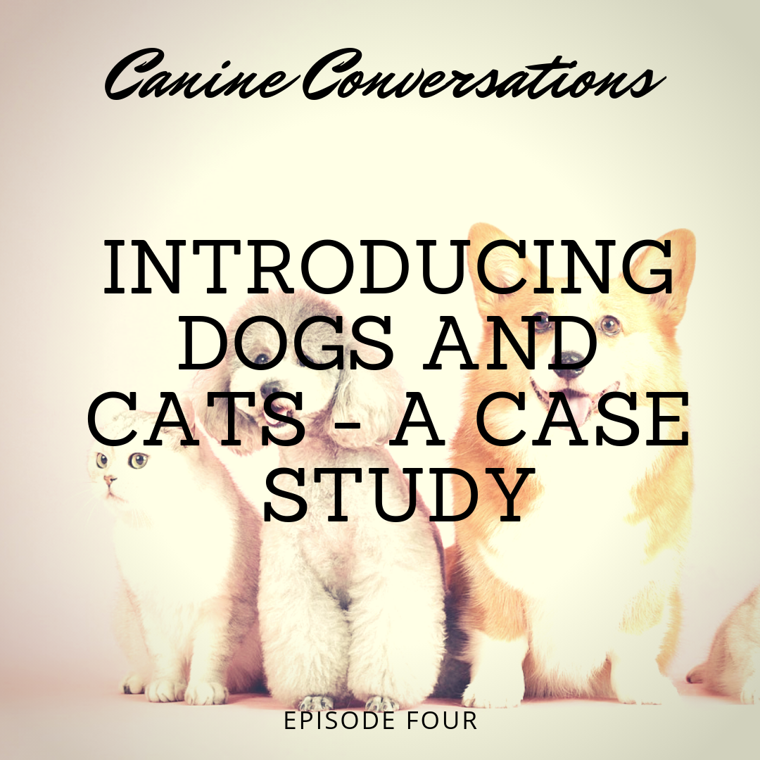 canine conversations dog training podcast