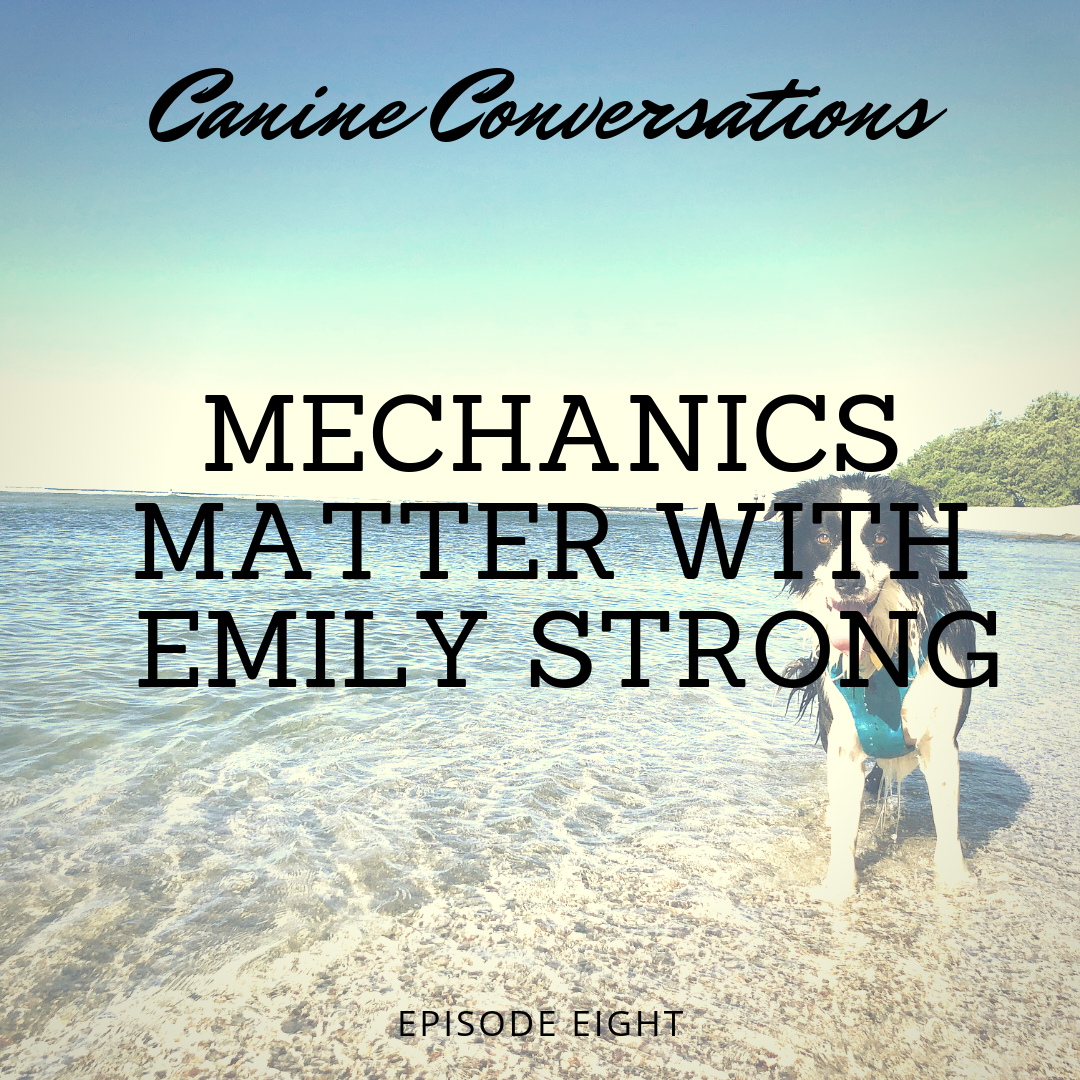 canine conversations dog training podcast mechanics matter with emily strong