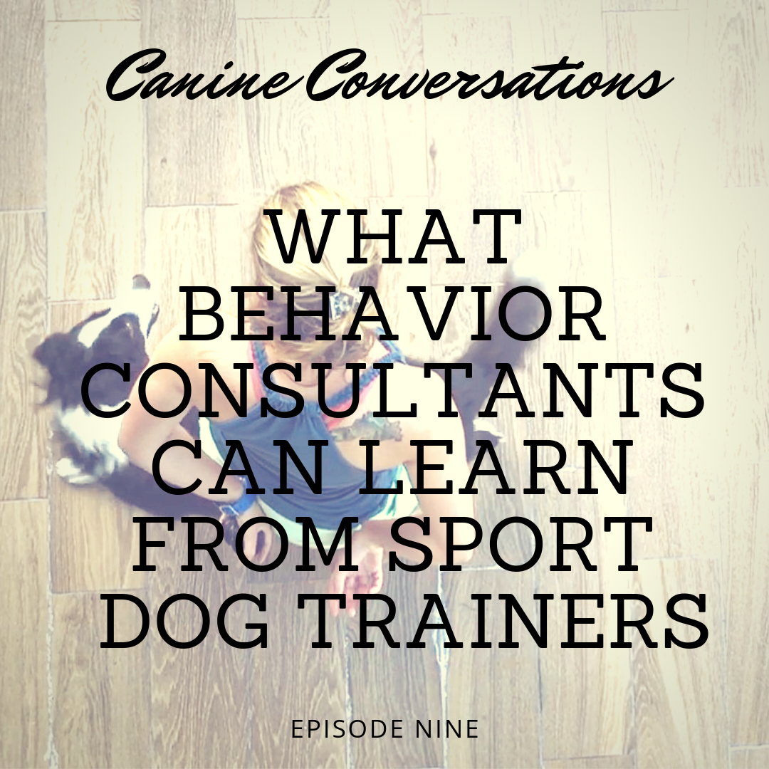 canine conversations dog training podcast what behavior consultants can learn from sport dog trainers