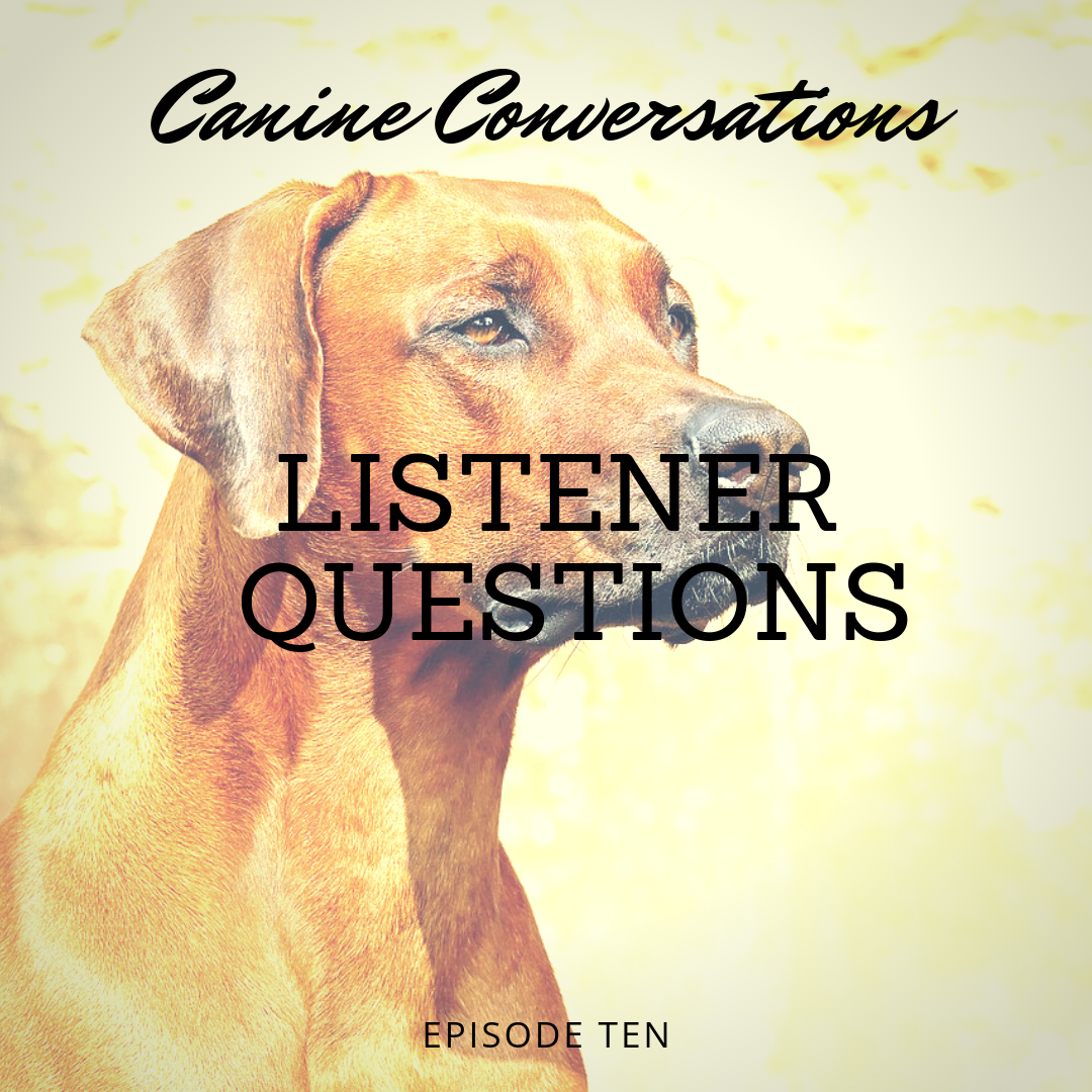 canine conversations dog training podcast listener questions