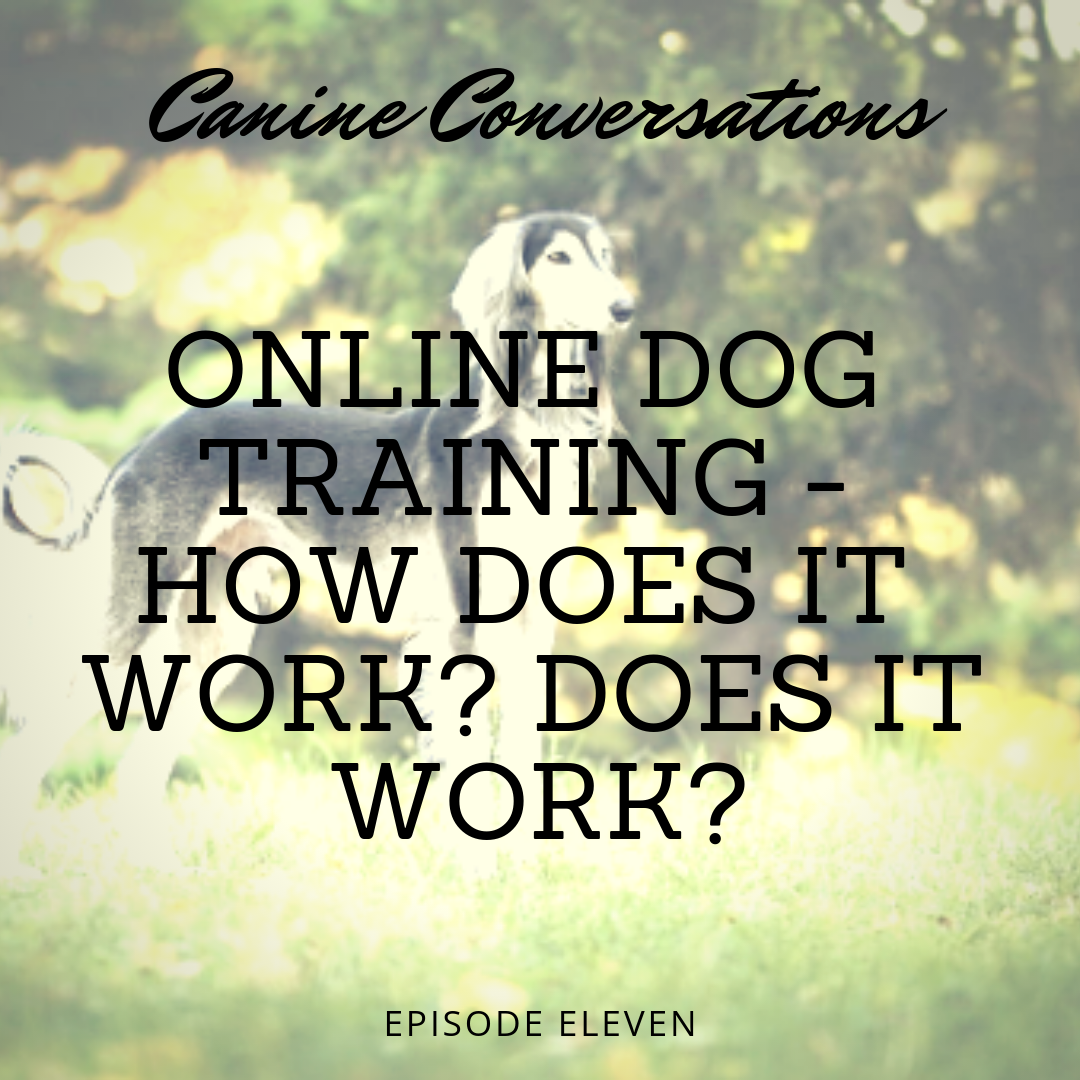 canine conversations dog training podcast online dog training how does it work