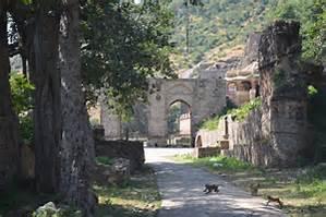 cat crossing road to haunted fort kila