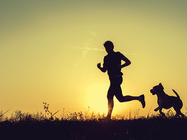 Unique Ways to Workout With Your Dog
