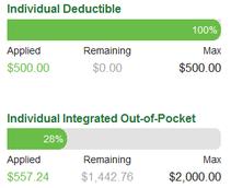 Individual Deductible $500