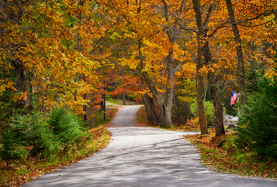 Best-Fall-Drive.jpg