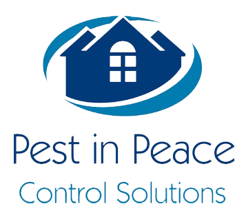Licensed, Professional Pest Technicians