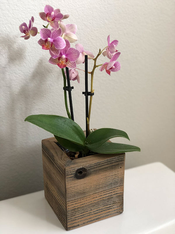 rustic planters, wood planter, barnwood planter, wall wood planter box, farm wood planter, barnwood office planter, rustic wood wall planter, rustic decor, small wood planter, orchid
