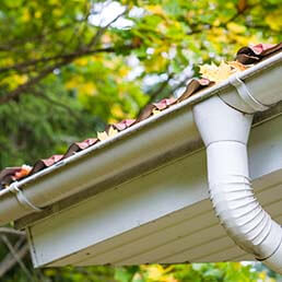 Gutter Cleaning In Dallas & Fort Worth Area
