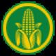 ➤ Corn Mazes