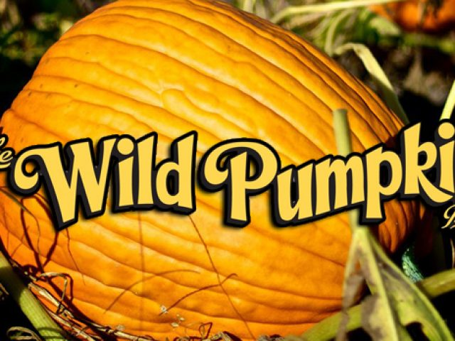 The Wild Pumpkin