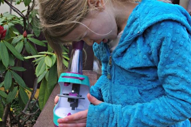 Nancy B Microscope