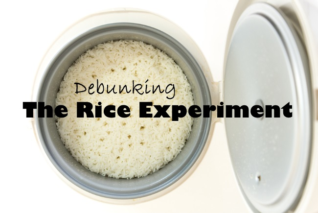 Stream rice in electric rice cooker on white background