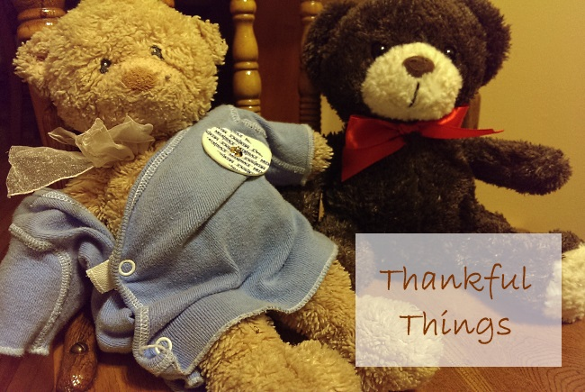 Tim Teddy - Thankful Things