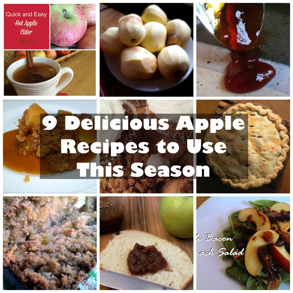 9 Delicious Apple Recipes to Use This Season