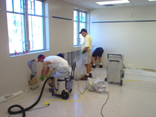 Mold Removal Services Atlanta