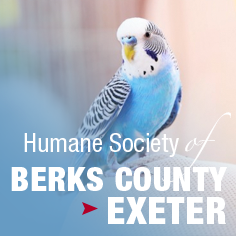 Humane Society Berks County Exeter
