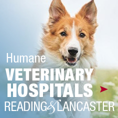 Humane Veterinary Hospitals