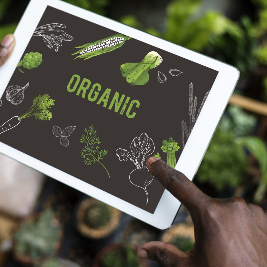 when to buy Organic food vs non organic food, healthy food, eat clean