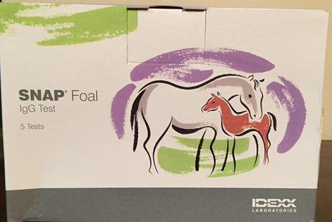 Foaling IgG Test