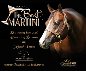 The Best Martini