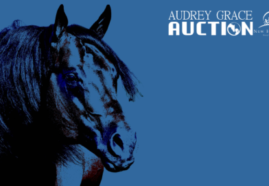 2019 Audrey Grace Auction to be the Best Yet