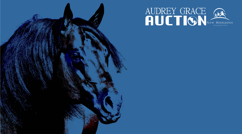 2019 Audrey Grace Auction