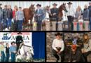 Legendary Horsewoman Susan Scott Mourned After Fatal Accident
