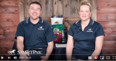Ask the Vet – COVID-19 and Equine Coronavirus