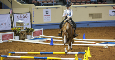 AQHA adds Level 1 Classes to 2020 World Shows