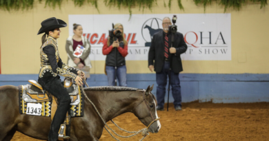 AQHA World Show to debut Zimeta™ 3-Year-Old Western Pleasure Stakes