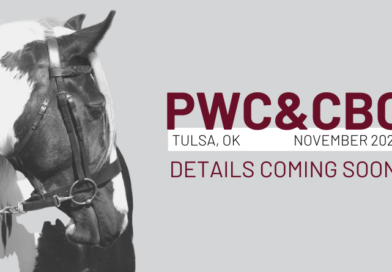 Pinto World Show Rescheduled to November