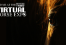 Virtual Horse Expo Introduction