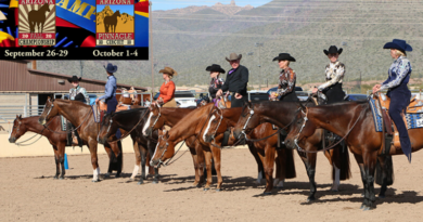 Arizona Fall AQHA Circuits add Trail and Western Riding Futurities