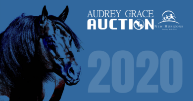 Audrey Grace Auction 2020