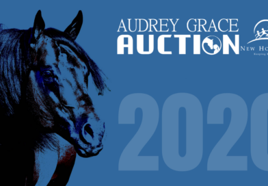 Audrey Grace Auction Gears up for a Great 2020