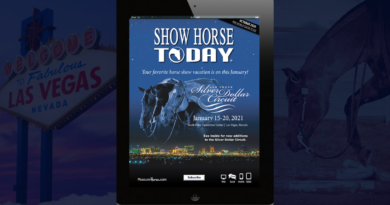 October 2020 Show Horse Today
