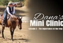 Dana's Mini Clinics | Episode 2 – The Importance of the Stop (Part 2)
