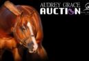 Audrey Grace Auction Closing Today