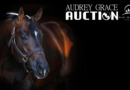 2020 Audrey Grace Auction Open