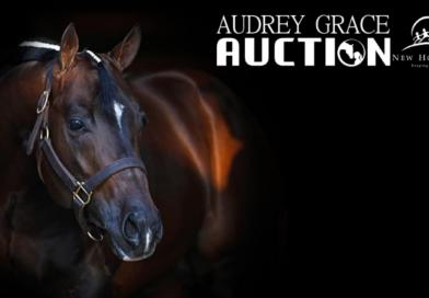 2020 Audrey Grace Auction Open