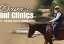 Dana's Mini Clinics | Episode 3 – The Importance of Using Your Hands Correctly in the Stop (Part 3)