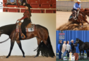Top Horses Sell in January Internet Auctions