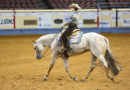 Adequan® Select World to be Hosted with Farnam AQHA World in 2021