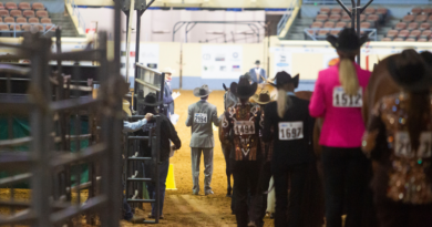AQHA Level 1 Classes Remain at their Respective AQHA World Shows in 2021