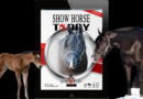 Stallion/Color Breed issue of Show Horse Today is Live!