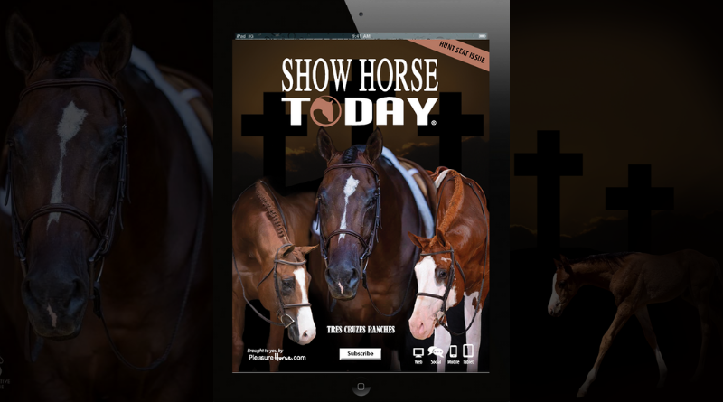 Hunt Seat Issue of Show Horse is Live!