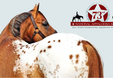 2021 National & Youth World ApHC Shows Gearing Up for Return to Tulsa